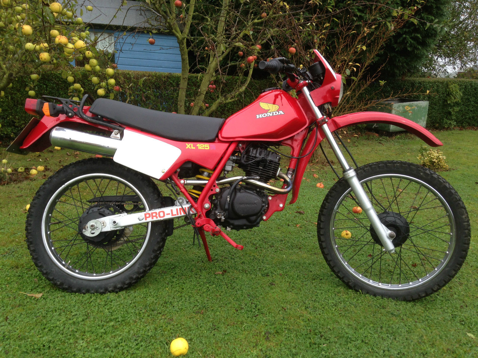 1982 honda xl125rc xl 125 r tl cb cg xr nice collectable bike. Black Bedroom Furniture Sets. Home Design Ideas