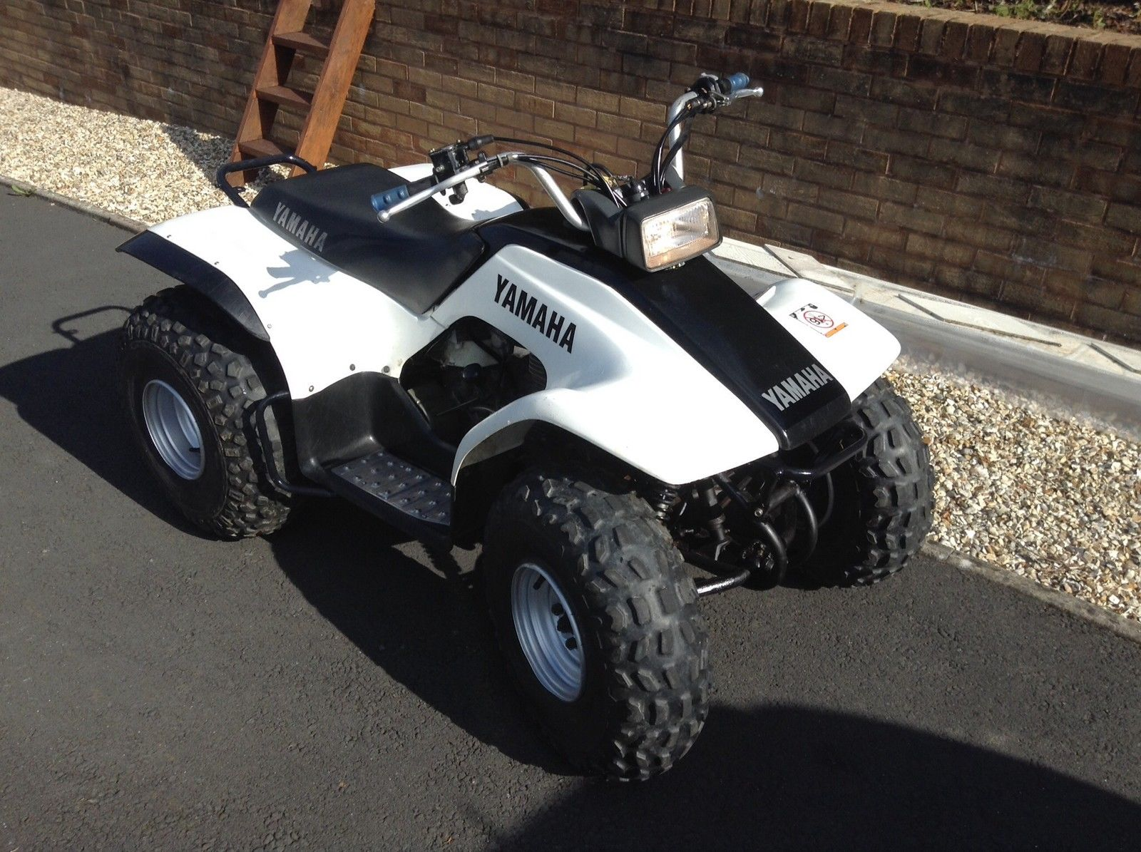 yamaha breeze 125cc quad bike electric start automatic with reverse. Black Bedroom Furniture Sets. Home Design Ideas